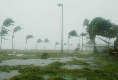Arrete Vent Cyclonique