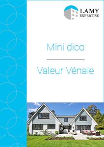 Couverture Mini Dico VV 2