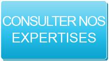 Consultez Expertises 2