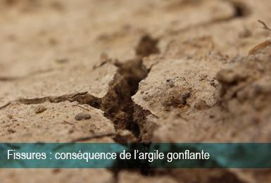 Fissures Argile Gonflante